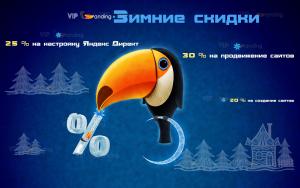 Зимняя акция Viplanding.net